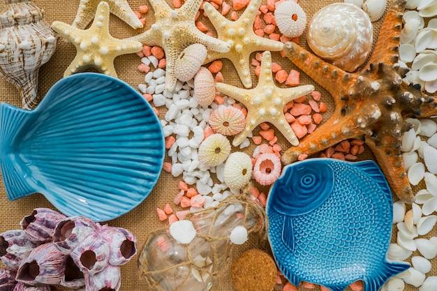 Composição da natureza com elementos marinhos