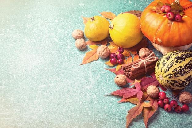 Composição de abóbora de outono em um azul