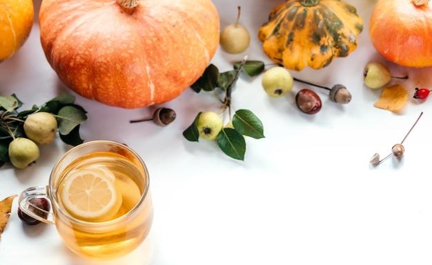 Composição de ação de graças de outono com abóboras, chá de limão, bolotas e bolotas