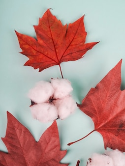 Composição de boho de folhas de bordo vermelhas e algodão.