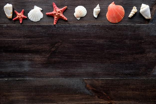 Composição de conchas do mar em fundo de madeira com espaço de cópia