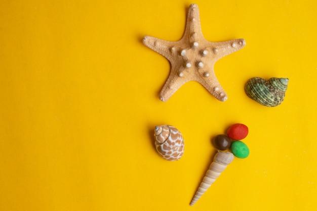 Composição de conchas do mar exótico. conceito de sorvete. vista do topo