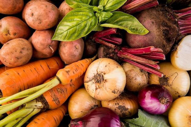 Composição de diferentes vegetais em close-up