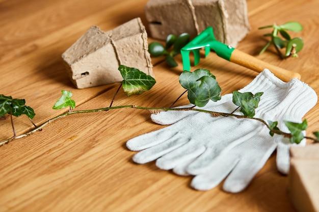 Composição de ferramentas de jardinagem na superfície de madeira