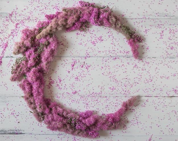 Composição de flores. círculo feito de flores cor de rosa sobre fundo branco.