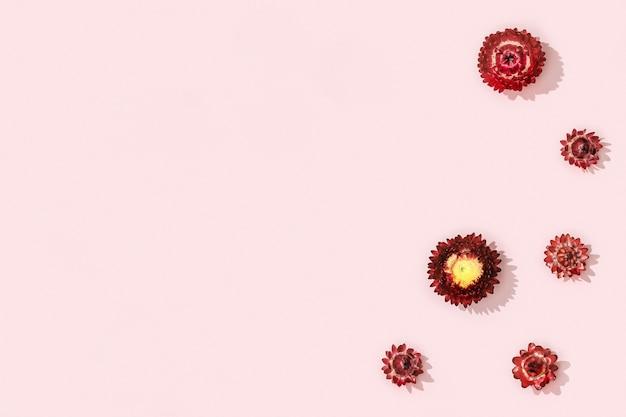 Composição de flores de flores vermelhas secas em rosa suave