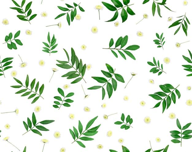 Composição de flores e folhas. padrão feito de várias flores coloridas, isolado no fundo branco. seamless pattern flat lay stiil life.