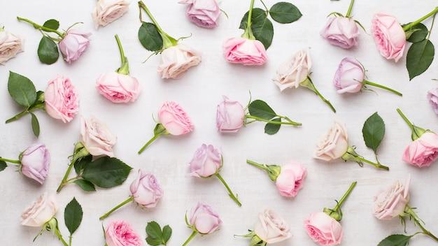 Composição de flores e folhas