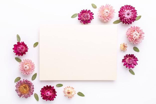 Composição de flores. em branco de papel e moldura feita de flores secas em fundo branco. postura plana. vista do topo. copiar espaço - imagem