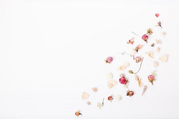 Composição de flores festivas. moldura feita de flores rosas secas, conchas, fita em fundo branco. vista superior aérea, configuração plana. copie o espaço. conceito de aniversário, mãe, dia dos namorados, mulher, dia do casamento