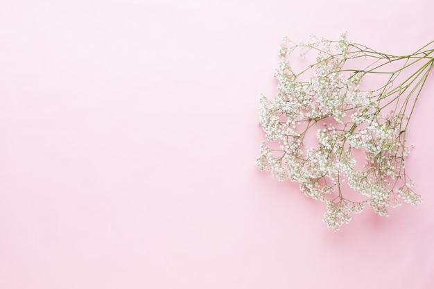 Composição de flores. flores de gipsófila em fundo rosa pastel. camada plana, vista superior, espaço de cópia