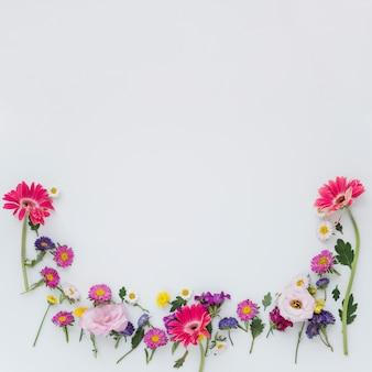 Composição de flores frescas brilhantes