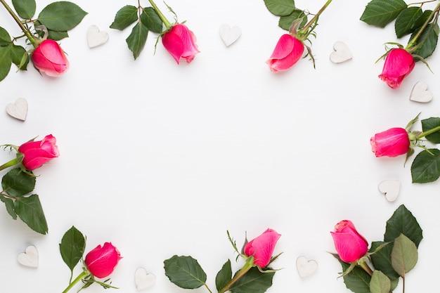 Composição de flores. moldura feita de rosa vermelha em fundo branco. camada plana, vista superior.