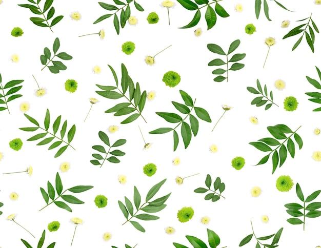 Composição de flores. padrão feito de crisântemos, leito plano isolado, vista superior, padrão sem emenda.