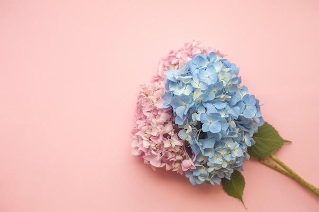 Composição de flores rosa e azul de hortênsia