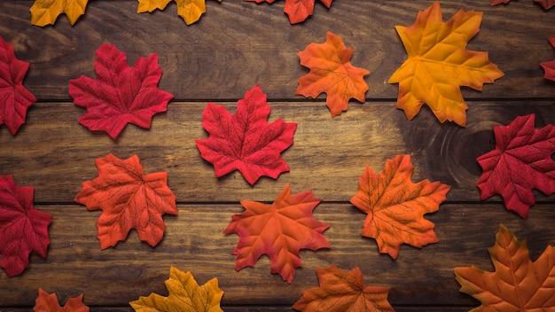 Composição de folhas de bordo coloridas