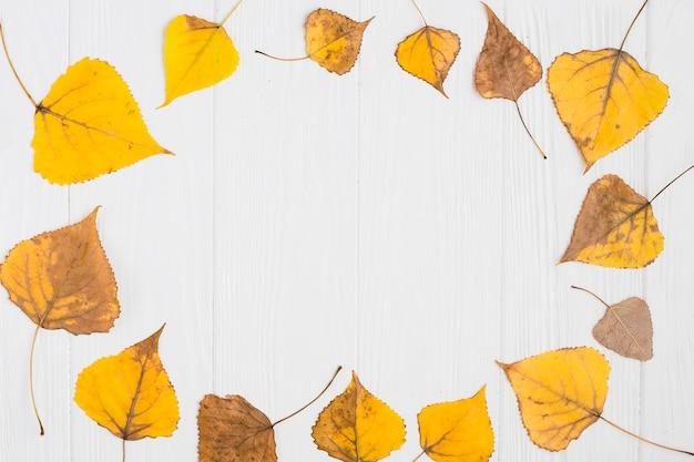 Composição de folhas de outono amarela