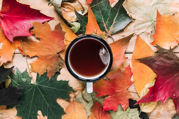 Composição de folhas de outono com xícara de chá na madeira