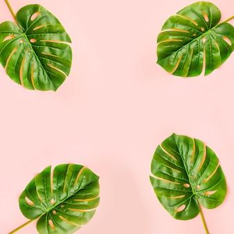 Composição de folhas de palmeira de verão