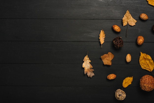 Composição de folhas e miolo na mesa preta