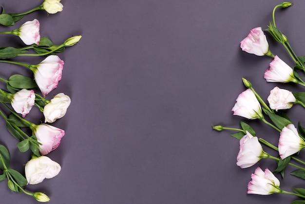 Composição de fronteira com espaço vazio no centro, feito de florescência eustoma rosa, plana leigos. cantos decorativos florais em fundo preto.