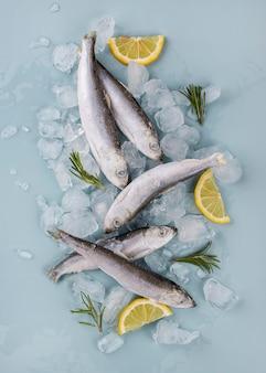 Composição de frutos do mar congelados na mesa