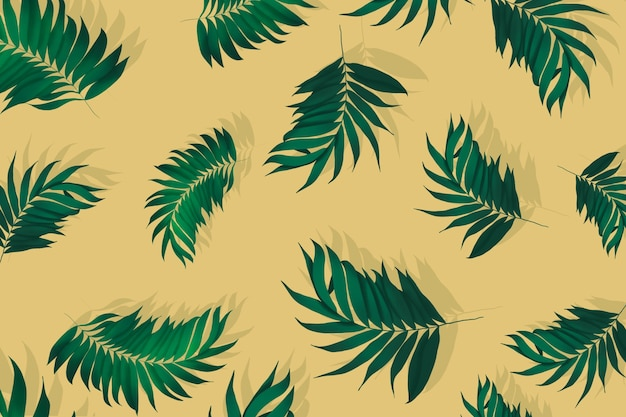 Composição de fundo de folhas de palmeira