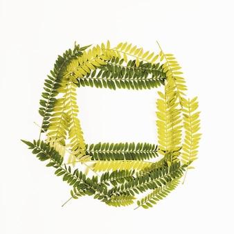 Composição de galhos de samambaia verde e amarelo
