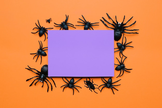 Composição de halloween com aranhas