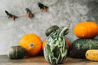 Composição de Halloween com cabaça verde e morcegos