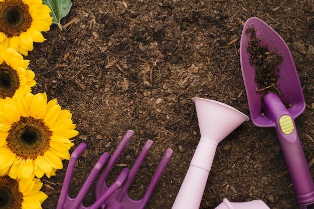 Composição de jardinagem com girassóis e equipamento de jardinagem