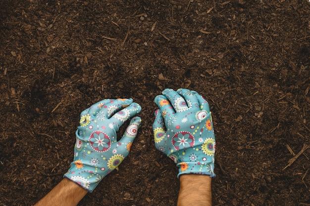 Composição de jardinagem com plantação de mãos