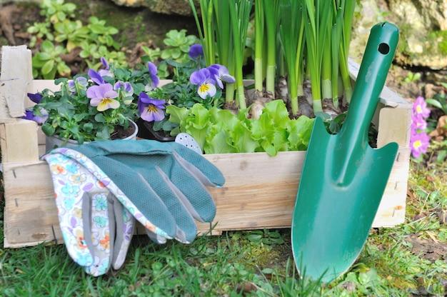 Composição de jardinagem de primavera