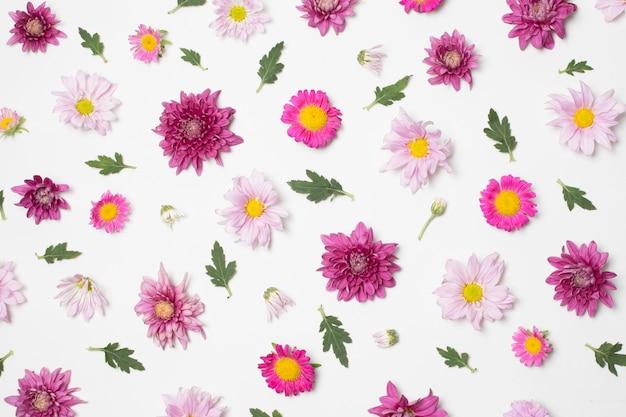 Composição de maravilhosas flores brilhantes e folhas verdes