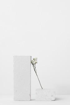 Composição de natureza morta branca