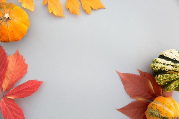 Composição de outono. abóboras, folhas em fundo cinza pastel.