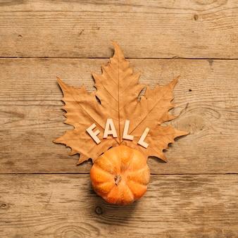 Composição de outono com abóbora e folha