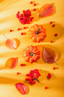 Composição de outono com folhas, abóboras, bagas de rowan em amarelo