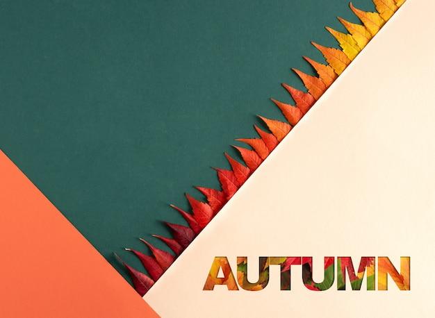 Composição de outono com folhas brilhantes. fundo geométrico em cores verdes, laranja e pastel.