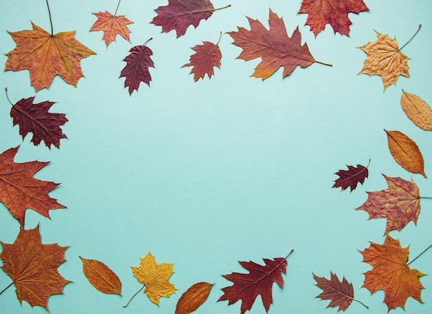 Composição de outono com folhas
