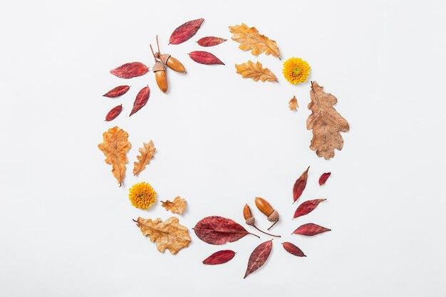 Composição de outono. coroa de flores feita de folhas de outono vermelhas e douradas, flores e bolotas. maquete de outono do círculo, disposição plana, vista superior, espaço de cópia