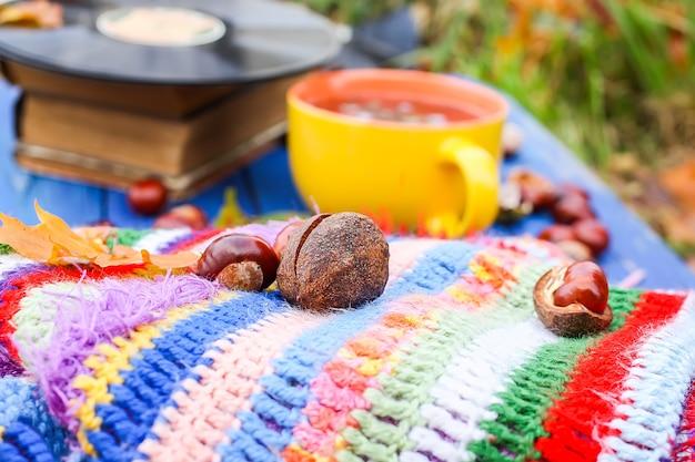 Composição de outono da xícara de cerâmica amarela de chá de ervas e discos de vinil vintage em fundo de madeira envelhecido com manta de crochê artesanal brilhante, livro antigo, folhas de outono outono e castanhas.