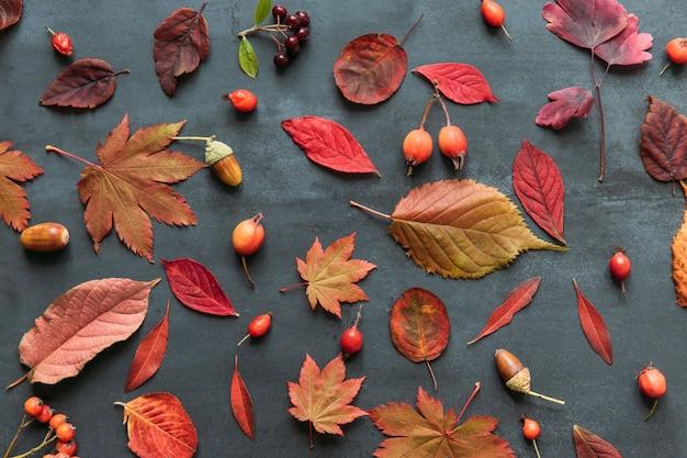 Composição de outono de folhas coloridas, espinheiro maduro, bagas de rosa mosqueta, romano, bolota no fundo azul marinho grunge, plana leigos