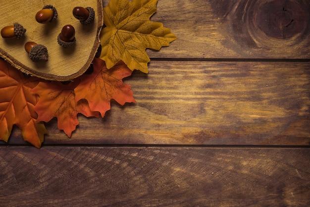 Composição de outono elegante de madeira e bolotas