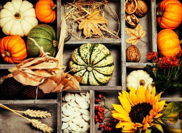 Composição de outono em caixa de madeira