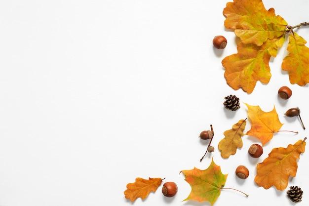 Composição de outono. folhas de outono, bolotas, cones, nozes. vista de cima, copie o espaço