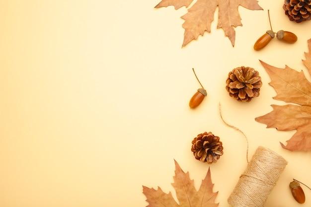 Composição de outono. folhas de outono e milho, pinha, estrela de anis. camada plana, vista superior, espaço de cópia