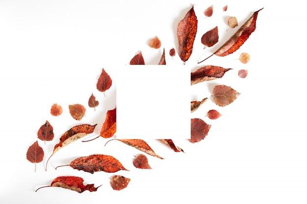 Composição de outono. folhas secadas e frame branco no fundo cinzento pastel. outono e conceito de dia de ação de graças. flat lay, vista de cima, copie o espaço