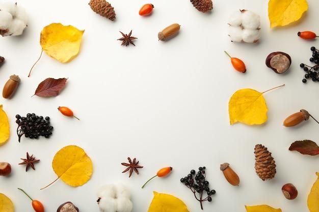 Composição de outono. folhas secas, flores, frutos em fundo branco. conceito do dia de ação de graças. camada plana, vista superior, espaço de cópia