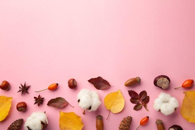 Composição de outono. folhas secas, flores, frutos em fundo rosa. conceito do dia de ação de graças. camada plana, vista superior, espaço de cópia